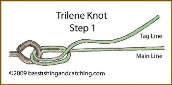Tying a Trilene Knot -Step One