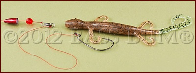 Z Man Lizard Floating Lizard Carolina Rig