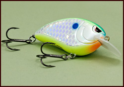 A Crankbait Rod and Fishing Rod Action - Best Fishing Rod