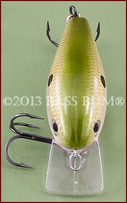 Crankbait With Square Bill
