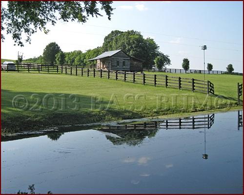 Farm Pond Paradise