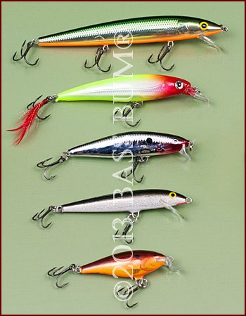 Minnow Lure Assorted Sizes