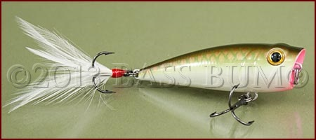 Fishing poppers successfully means accurate casts and for Academy sports fishing