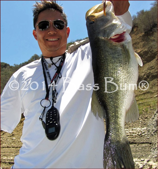 Castaic Lake 5.75lb Largemouth Bass