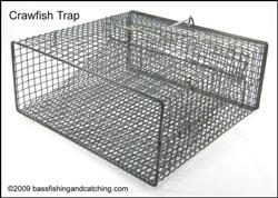 Crawfish Trap