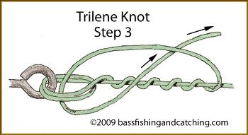 Tying a Trilene Knot - Step Three