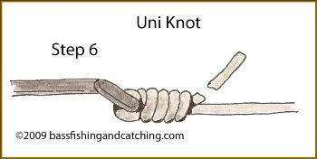 Tying a Uni Knot Step 6