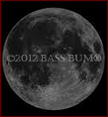 Moon phase fishing as a strategy for finding the best time for Fishing moon phase