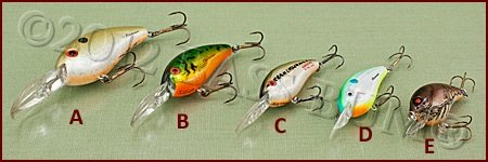 Crankbait Bills - Assorted Lengths/Styles
