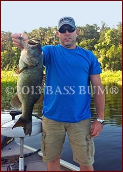 Largemouth Bass, 8lb 2oz, 22 inches