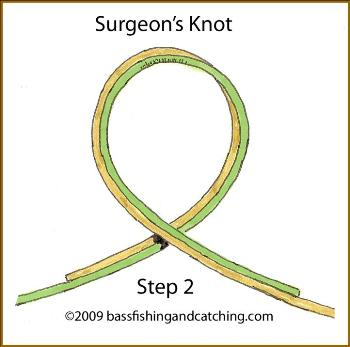 The surgeons knot is best for joining two lines of the for Surgeon s knot fishing