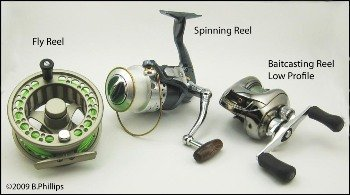Image result for Types of Reels