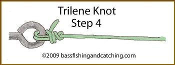Trying a Trilene Knot - Step Four
