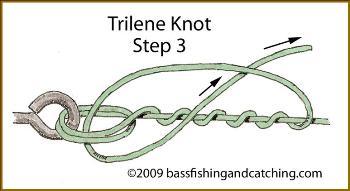 Tying a Trilene Knot - Step Three